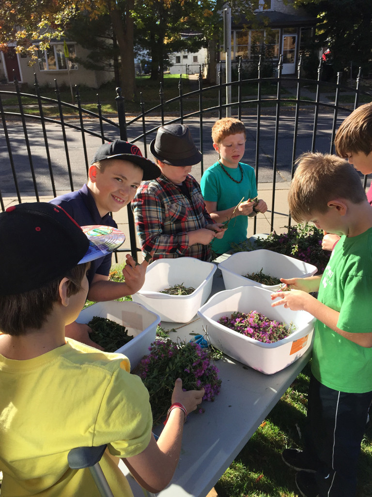 Students gathering plant ingredients